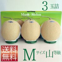 クラウンメロン Mサイズ山等級 3玉詰 【ネット注文限定・送料無料】