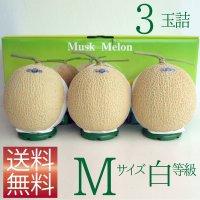 クラウンメロン Mサイズ白等級 3玉詰 【ネット注文限定・送料無料】