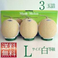 クラウンメロン Lサイズ白等級 3玉詰 【ネット注文限定・送料無料】